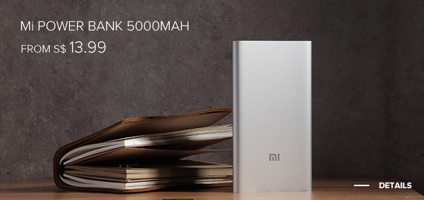 Mi Power Bank 5000 mAh Silver